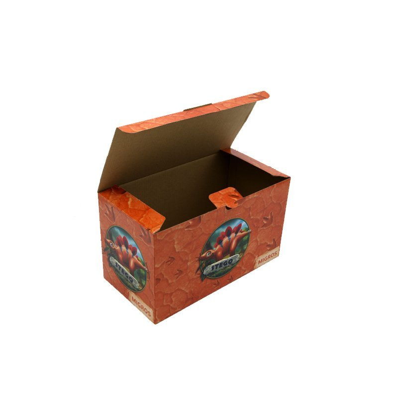 Custom Toy Box for Electronic Toys with Carton Pritning